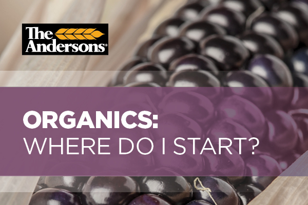 Did you know The Andersons now offers organic transition consulting services? We are ready to help you successfully transition to organic agriculture.